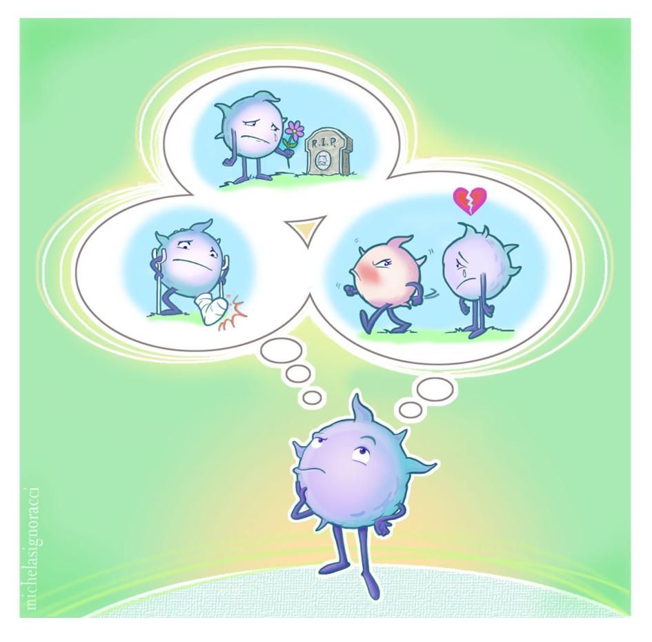 memoria cellula